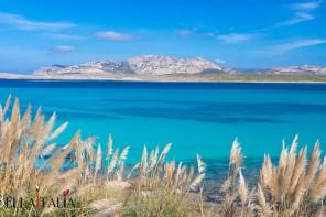 Pelosa-beach-Sardinia-Italy